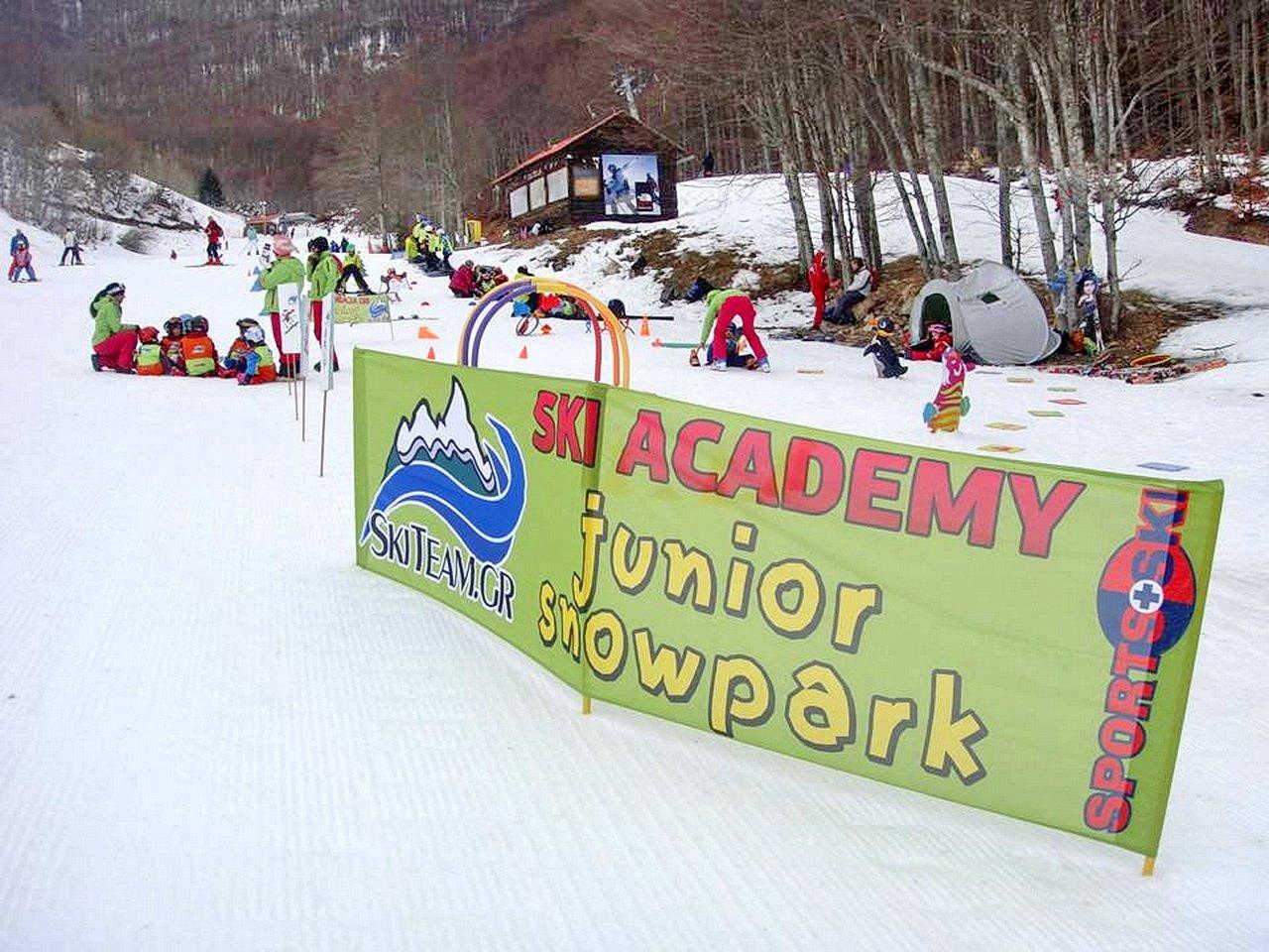 skiteam.gr-ski-academy-thessaloniki-2nd-weekend-18-19-january-2015-3-5-pigadiai-08